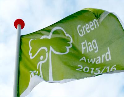 greenflag16